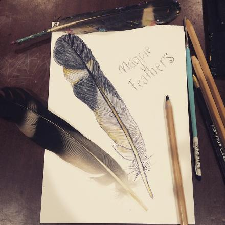 I create all the dots on my artworks using feathers i find on my daily walks. My favourite feathers are from the magpie.
